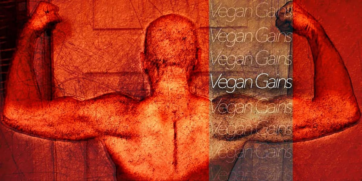 Vegan Gains: The Journey Continues 3