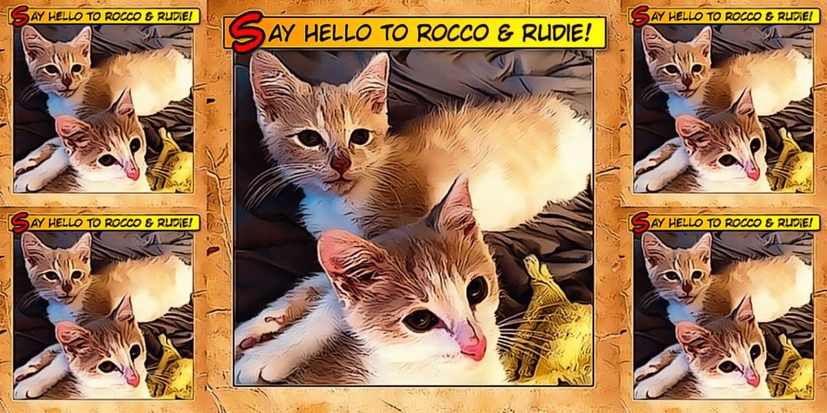 Say Hello To Rocco & Rudie 1