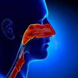 Sinonasal Sarcoidosis: Getting My Nose Out Of Joint