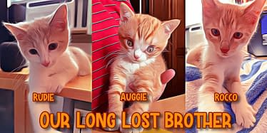 Rocco, Rudie And Brother Auggie 117