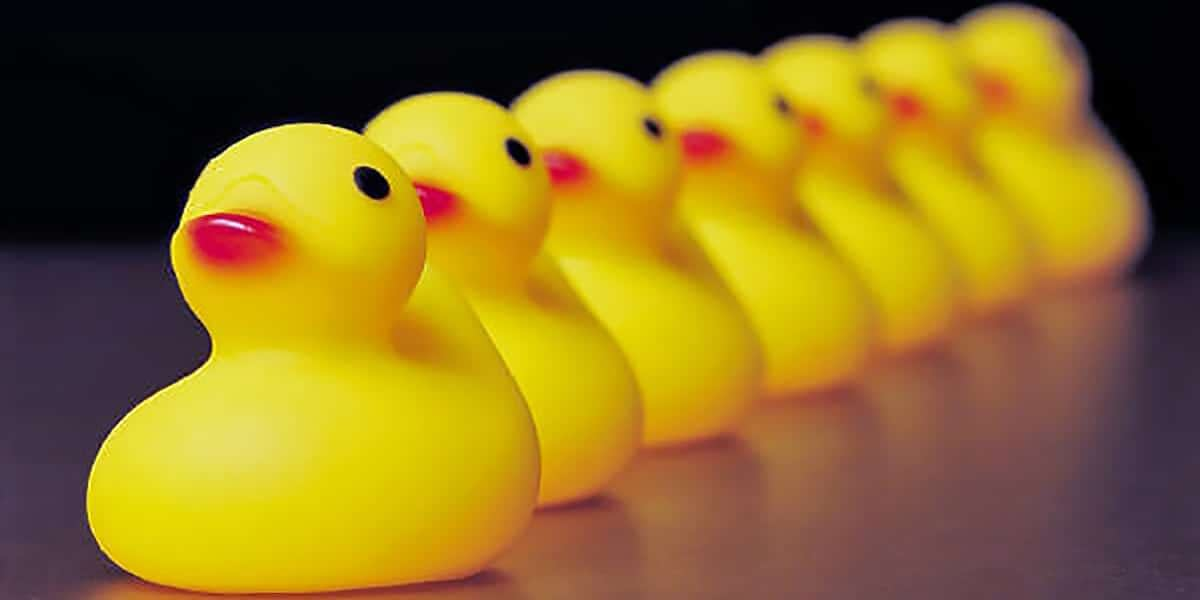 Do You Have Your Ducks In A Row?